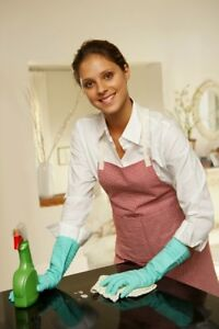 TOP-NOTCH CLEANING LADY
