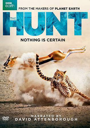 the hunt dvd 2016 2 disc set bbc earth in very good condition