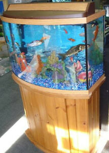 Fish Tank Aquariom 36 Gal Bow Front Complete With