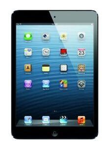 iPad mini 16GB in Black excellent condition-like new