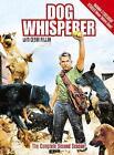 Dog Whisperer DVD