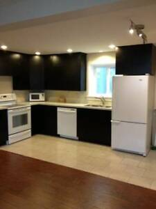 New 2 bedroom suite in Willoughby area (Langley)