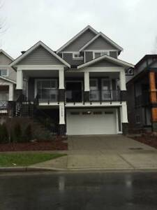 *Like New* 2 Bed / 1 Bath Suite in Burke Mountain (Coquitlam)