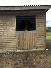 Mobile Stable/shelter