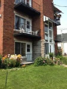 Pet friendly 4 1/2 for rent in Longueuil