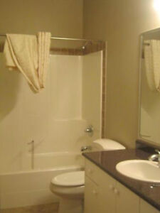 Basement Suite for Rent : Available November 15