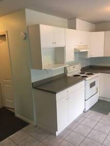 2 bedroom basement - Surrey