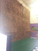 20 ft high Rock Wall with 3 Auto belays