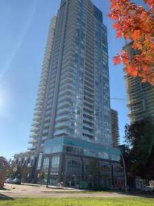 730 sq ft Metrotown high-rise two bedroom apartment for rent