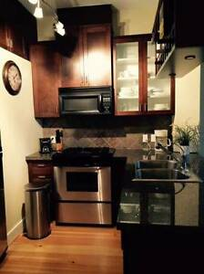 Furnished appt with parking available December 1st