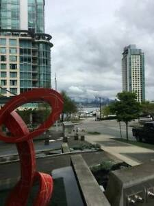 Coal Harbour Two Bedroom Two Bathroom Condo/Apartment