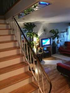 SUBLET FROM NOV OR DECEMBER .(3 LEVEL TOWNHOUSE )