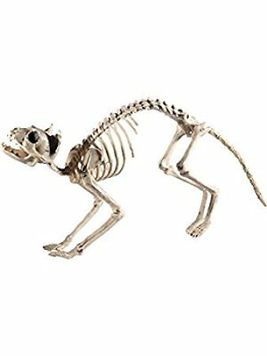 Cat Skeleton Prop Decoration Halloween Fancy Dress Accessory - Smiffys Halloween Props