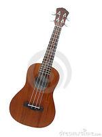Ukulele, BANJO, Harmonica , Guitar, Vocals, Bass Guitar Lessons