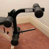 Leg Extension OR Preacher Curl Attachment Northern Light Benches