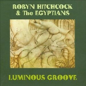 NEW Luminous Groove (Audio CD)