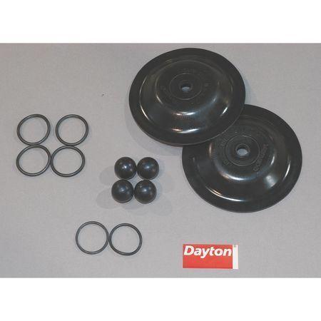 DAYTON 6PY66 Pump Repair Kit,Fluid