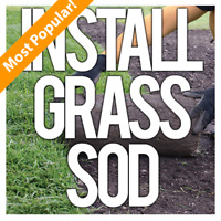 Sod | Grass | Lawn Installation & More!!!
