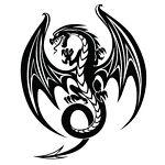 Dragon Mage Collectibles
