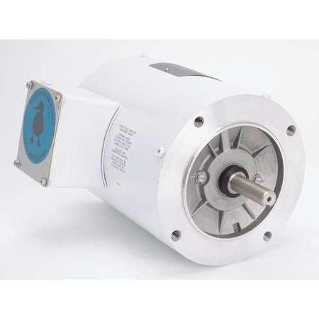 LEESON 113954.00 Washdown Motor,1/3 HP,56C Frame,60 Hz