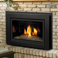Gas Fire Place Insert For Just $3,500