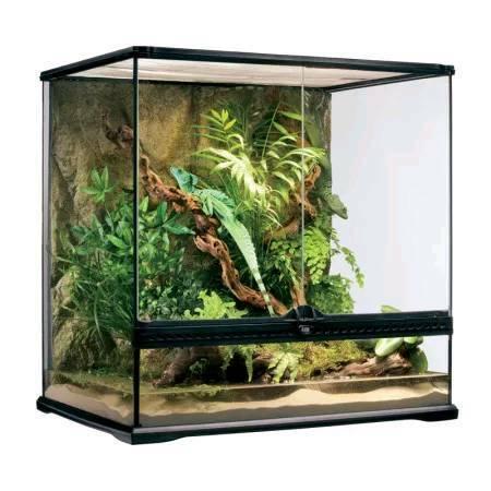 2 X Exo Terra Vivariums Terrarium Snake Reptile In South