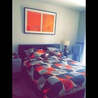 Queen Size Bed with 7 months old matress