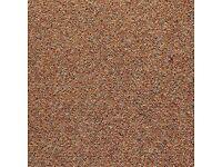 200 Brown Carpet Tiles. READ DESCIPTION.