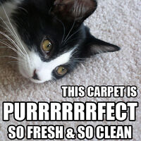 JET CARPET, UPHOLSTERY AND MATTRESS CLEANING