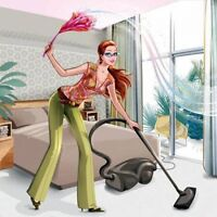 Professional cleaning house