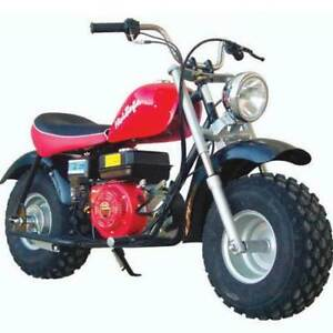 Looking for Mini Bike