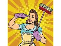 Do you need a trustworthy, reliable, english speaking cleaner?