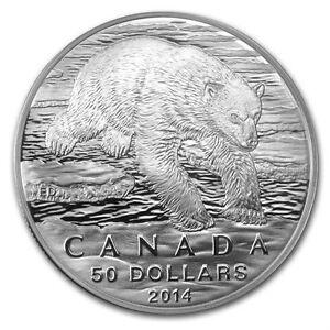 $50 POLAR BEAR FINE SILVER COIN 2014 Gatineau Ottawa / Gatineau Area image 2