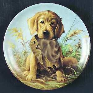 """Caught in the Act"" The Golden Retriever Plate"