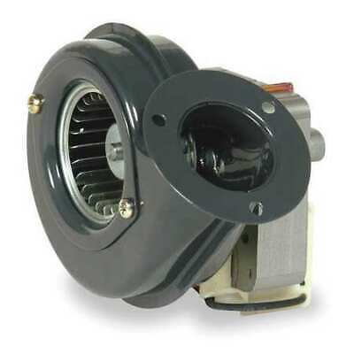 Dayton 1tdn1 Round Oem Blower 3394 Rpm 1 Phase Direct Rolled Steel