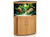 Juwel Trigon 190 Aquarium and Cabinet in Beech Finish