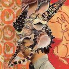 Rock Deja Vu Vinyl Records
