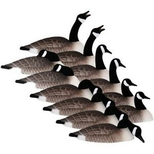 WANTED**** goose decoys