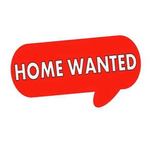 Wanted: long term home