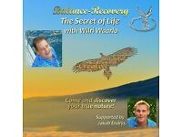 BALANCE-RECOVERY SELF-HEALING-MOMENT WITH WILRI