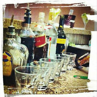 Lofty Events Bartending & Serving