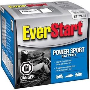 Three (3) New Everstart: 1 Month Old 6V Batteries With Boxes! London Ontario image 1