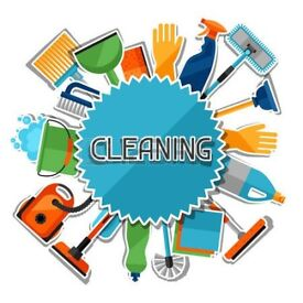 Domestic cleaner and ironing service
