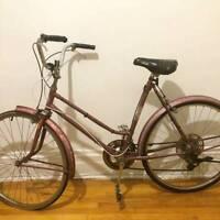 CCM Bike, Abus Lock, and CCM Helmet