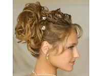 Clip in ladies NEW hairpiece blonde curly extension dark