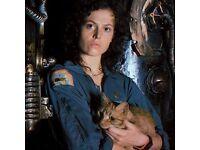 TOM's Film Club: Alien (1979)