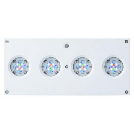 Aqua Illumination Hydra 64HD Wit