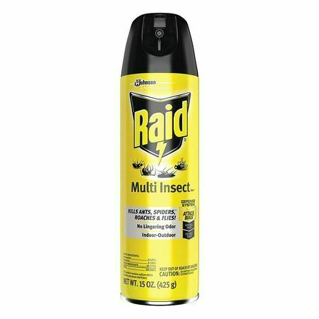 RAID 300819 Insect Killer,Indoor and Outdoor,15 oz.