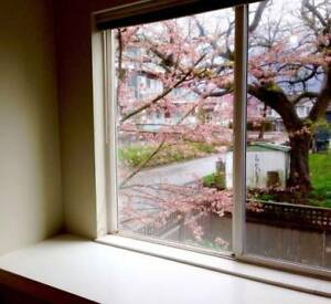 Furnished Townhouse BD  Close to Edmond Skytrain - Now or Later