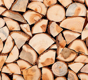 Firewood Forsale in Bancroft Oak and Maple, Excellent Prices Kawartha Lakes Peterborough Area image 1